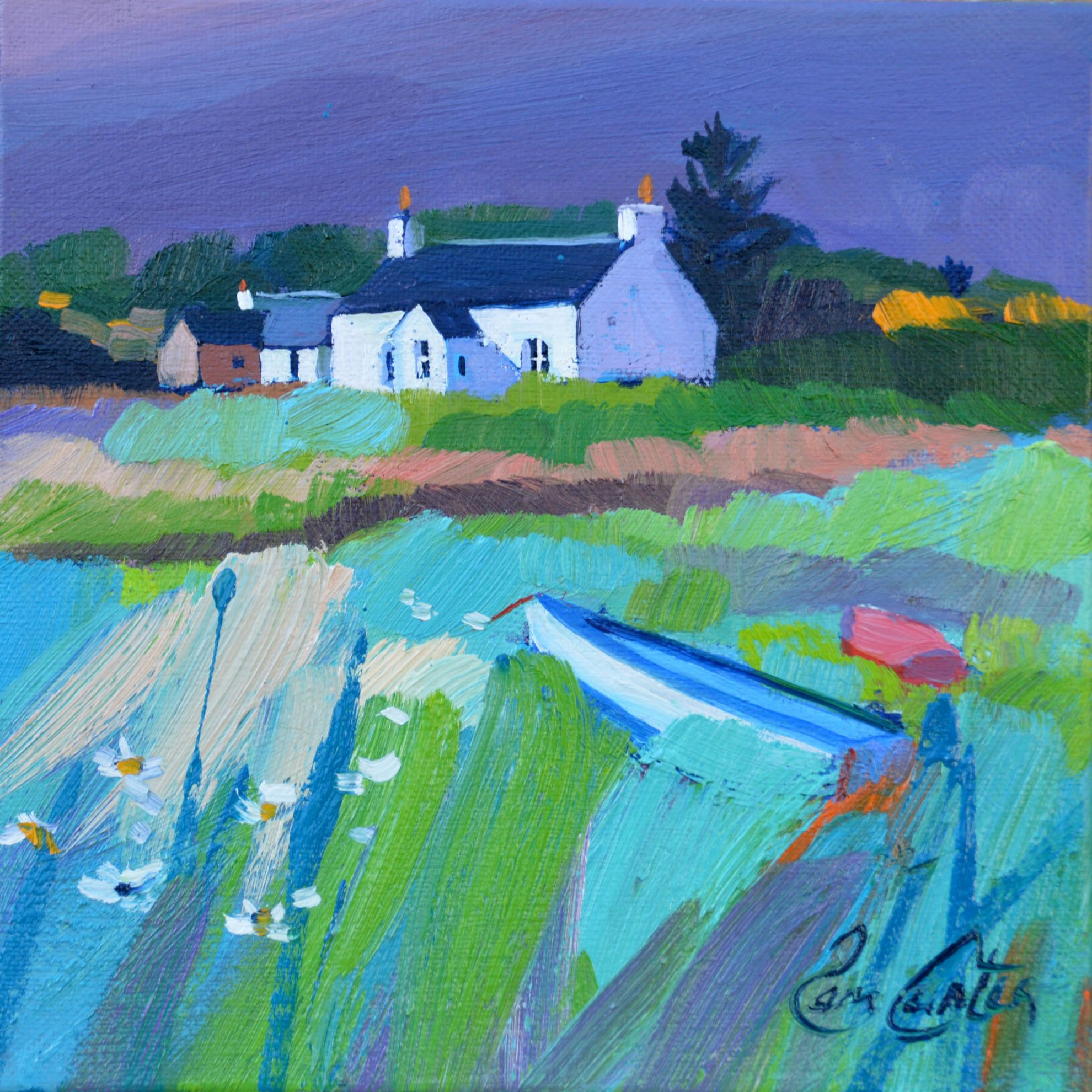 Gigha Crofts by Pam Carter
