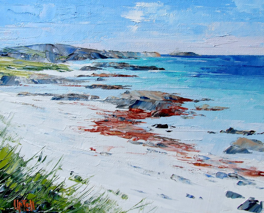 Back of the Ocean Beach, West Iona by Erni Upton