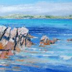 gulls on the rocks, Fionnphort, sound of Iona by Erni Upton