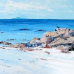 A Painting of Bird at Dutchman's Cap On The Beach At Western Iona